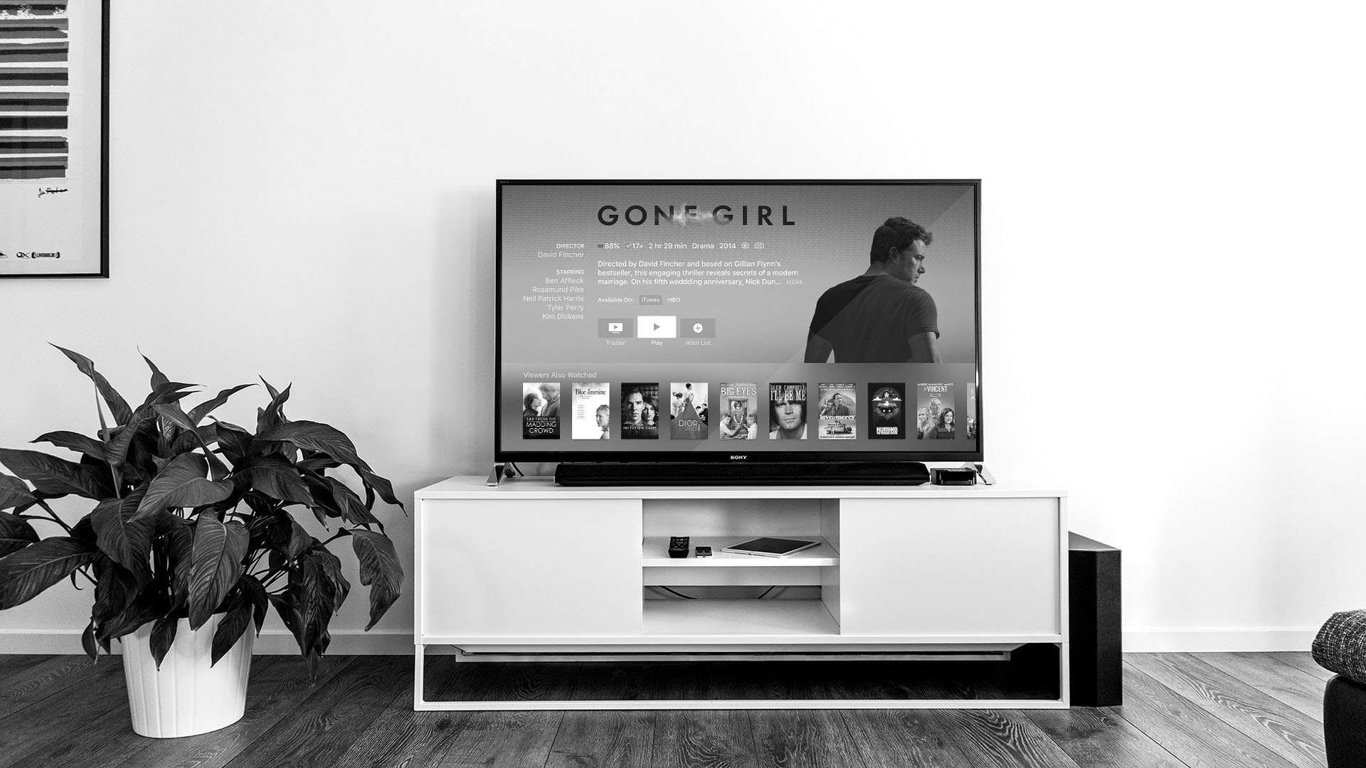 Image of a tv in living room.